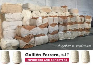 Guillén Ferrero, S.L. contínua y rápida ascensión en los mercados del algodón ecológico.